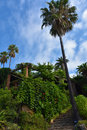 Botanical garden in blanes hortus botanicus mar i murtra at mediterranean coast of costa brava spain Stock Image