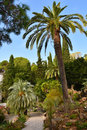 Botanical garden in blanes hortus botanicus mar i murtra at mediterranean coast of costa brava spain Stock Photography