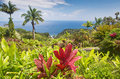 Botanical garden in hawai hawaii and the keopuka rock overlook Stock Photography