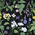 Botanical seamless pattern with blooming wild flowers and meadow flowering plants on black background. Floral backdrop