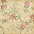 Botanical vintage roses shabby chic background Stock Photos