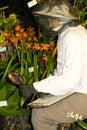 Botanist Royalty Free Stock Photo