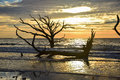 Botany Bay Sunrise Royalty Free Stock Photo