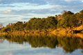 Botswana river Royalty Free Stock Images