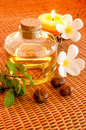 Bottle of aromatic essence oil Stock Image