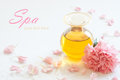 Bottle of aromatic essence oil with pink carnation flower Royalty Free Stock Image