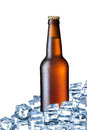 Bottle of beer ice isolated on white background Stock Image