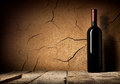 Bottle of cabernet in cellar near clay wall Stock Photography