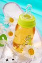 Bottle of camomile tea Stock Images