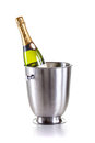 Bottle of champagne in cooler Stock Images