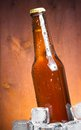 Bottle of fresh beer with drops and ice Royalty Free Stock Photo