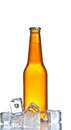 Bottle of fresh beer with ice,beer on summer Royalty Free Stock Photo