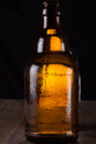 Bottle a full of beer in backlight Royalty Free Stock Images