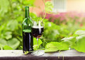 Bottle and glass with red wine in vineyard Stock Image