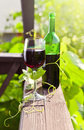 Bottle and glass with red wine in vineyard Royalty Free Stock Photos