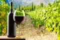 Bottle glass red wine vineyard background Stock Image