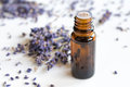 A bottle of lavender essential oil on a white background Royalty Free Stock Photo