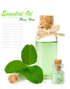 Bottle of scented oil and leaf clover in drops of water isolated over white Stock Images