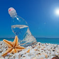 Bottle sea star and sun of water on white pebbles under a shining Stock Photos