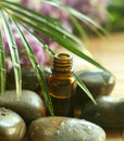 Bottle of tropical oil and stones. Royalty Free Stock Photo
