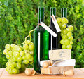 Bottle of wine, grape and cheese Stock Photos