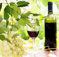 Bottle young wine and ripe grape background Royalty Free Stock Photos