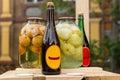 Bottles of apple cider