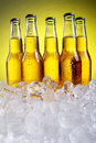 Bottles of cold and fresh beer with ice Royalty Free Stock Photo