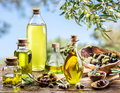 Bottles of olive oil on the old wooden table under olive tree. Royalty Free Stock Photo