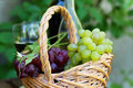 Bottles of red and white wine with grapes Stock Photo