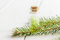 Bottles of sea salt and fir branches for aromatherapy and spa on white table background Royalty Free Stock Photo