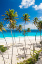 Bottom bay is one of the most beautiful beaches on the caribbean island of barbados it is a tropical paradise with palms hanging Royalty Free Stock Photo