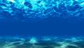 The bottom of the ocean. 2 Royalty Free Stock Photo