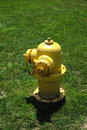 Bouche d'incendie jaune Images libres de droits