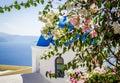 Bougainvillea bush on blue dome church background, Santorini island, Greece