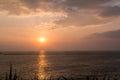Bougainvillea and Orange Sunset above ocean Kerala Royalty Free Stock Photo