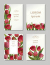 Bouguet of tulips