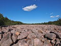 Boulder field in the pocono mountains of pennsylvania Stock Images