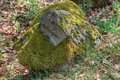 Boulder overgrown with moss