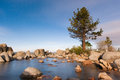 Boulders on lake tahoe with pine tree at night stars in the sky in a bay Stock Photo