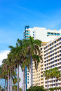 Boulevard with modern buildings and palm trees in Miami Beach, Florida. Royalty Free Stock Photo