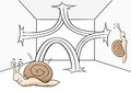 Bouncing snail vector illustration of a Royalty Free Stock Image