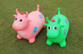 Bouncy Cow Hoppers. Royalty Free Stock Photo