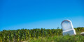 Boundary monument champagne vineyards in the cote des bar area of aube department near to baroville ardennes france europe Royalty Free Stock Images