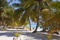 Bounty island beach Royalty Free Stock Photo