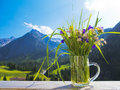 A bouquet of alpine field flowers and landscape Royalty Free Stock Photography