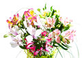 Bouquet of alstroemeria flowers a beautiful on white background Stock Photography