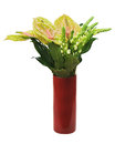 Bouquet from anturium flowers in red vase isolated on white back background closeup Royalty Free Stock Photos