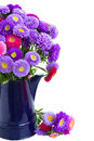 Bouquet of aster flowers in blue pot isolated on white background Stock Images