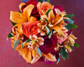 Bouquet of autumn flowers Royalty Free Stock Images